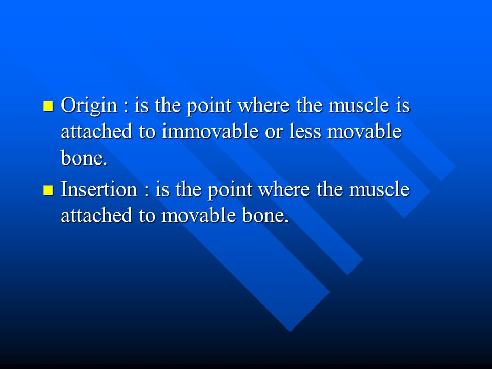 Origin : is the point where the muscle is attached to immovable or less movable bone.