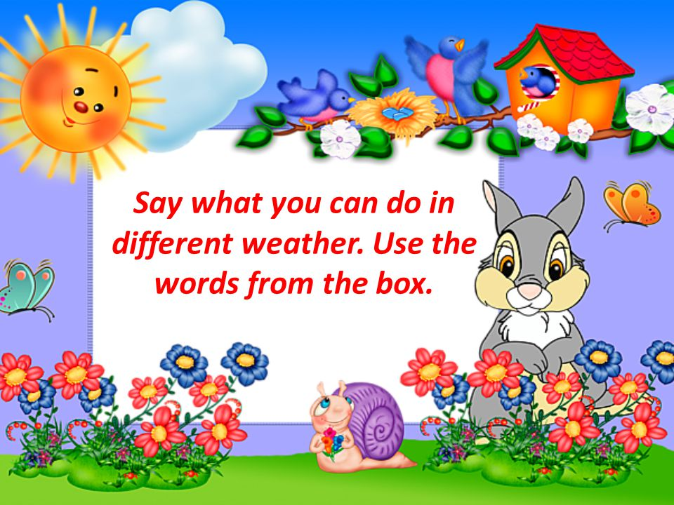 Say what you can do in different weather. Use the words from the box.