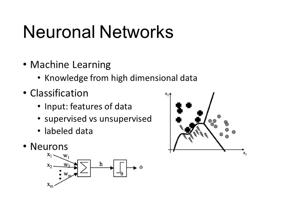 Neuronal Networks Machine Learning Classification Neurons