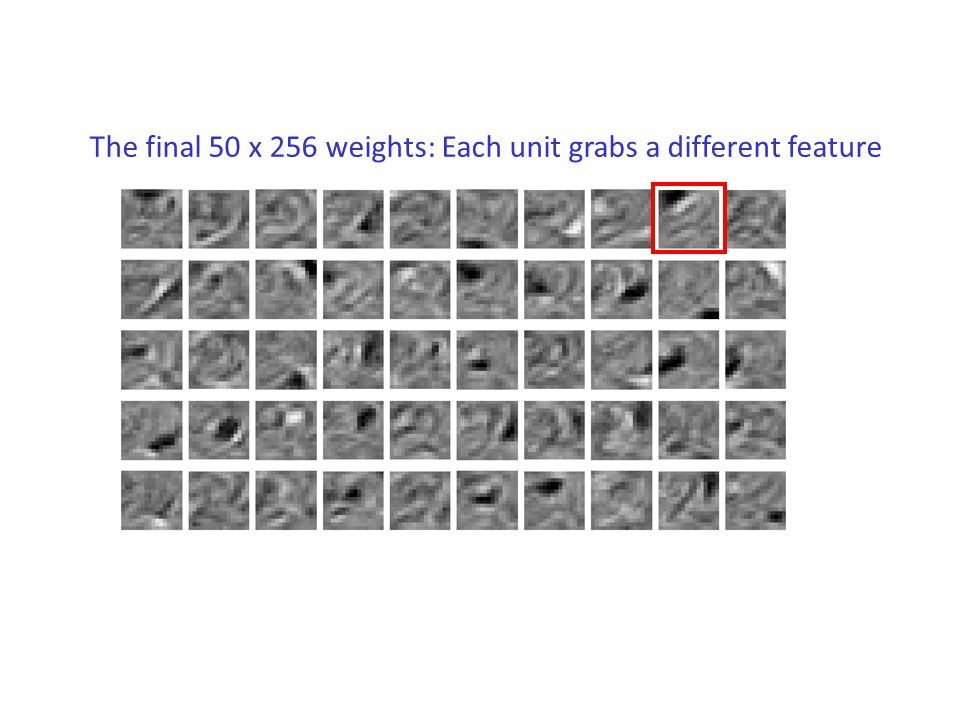 The final 50 x 256 weights: Each unit grabs a different feature