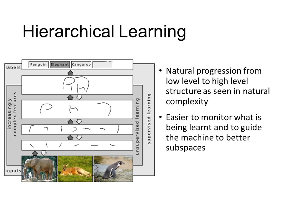 Hierarchical Learning