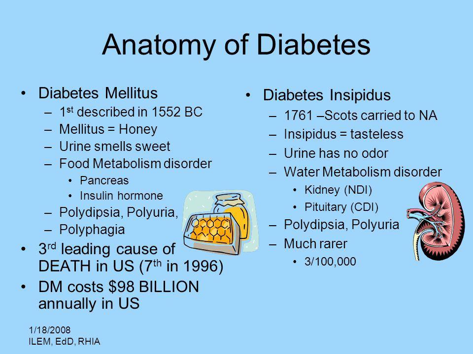 the definition of two types of diabetes diabetes mellitus and diabetes insipidus Diabetes includes type 1 and type 2 diabetes mellitus, gestational diabetes and diabetes insipidus diabetes can raise blood sugar levels and symptoms include increased urination treatment of diabetes is important and diet should be changed.