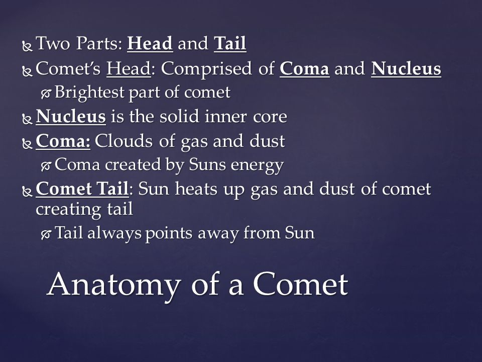 Anatomy of a Comet Two Parts: Head and Tail