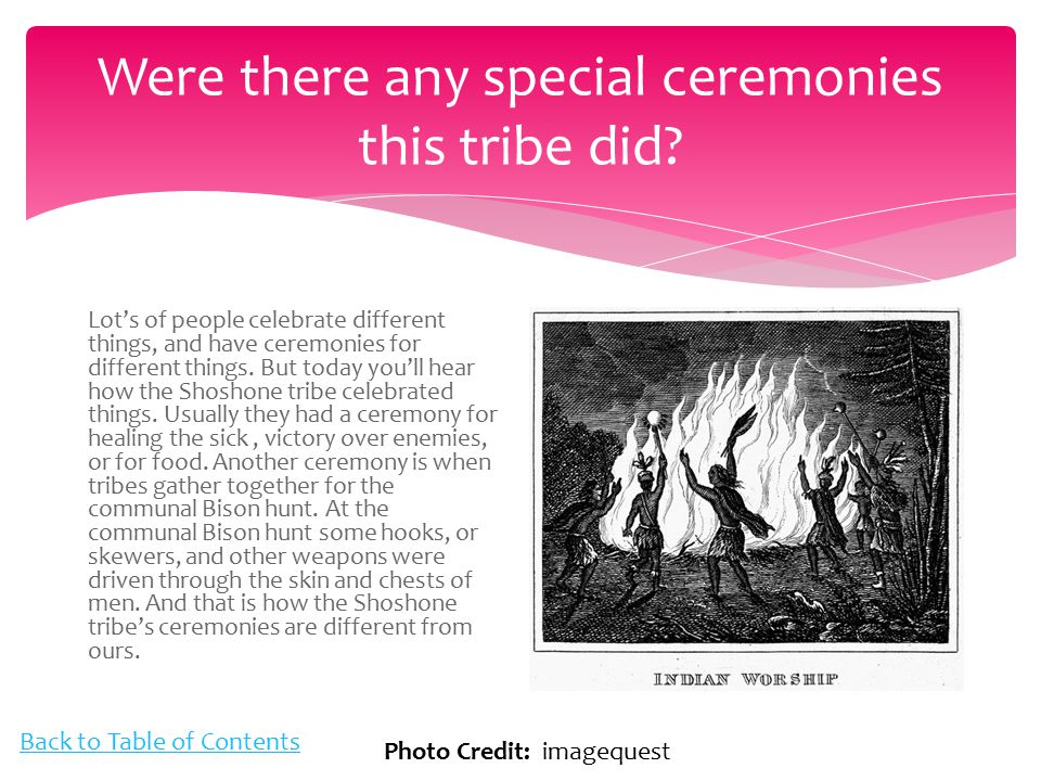 The Shoshone Tribe By Mckenna Ppt Video Online Download
