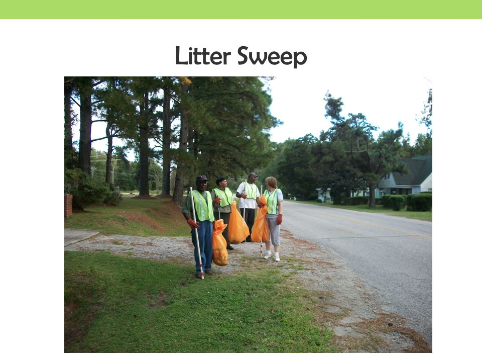 Litter Sweep