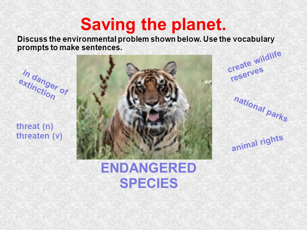 Saving the planet. ENDANGERED SPECIES create wildlife reserves