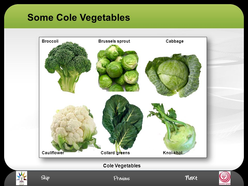 Introduction Cole crop are mainly grown in cold weather