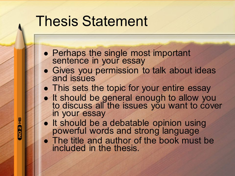 Thesis Statement Perhaps the single most important sentence in your essay. Gives you permission to talk about ideas and issues.
