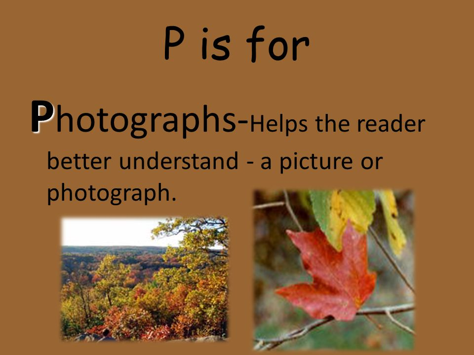 P is for Photographs-Helps the reader better understand - a picture or photograph.