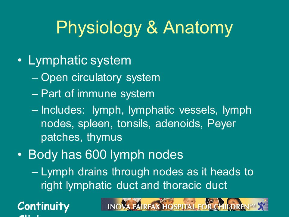 Physiology & Anatomy Lymphatic system Body has 600 lymph nodes