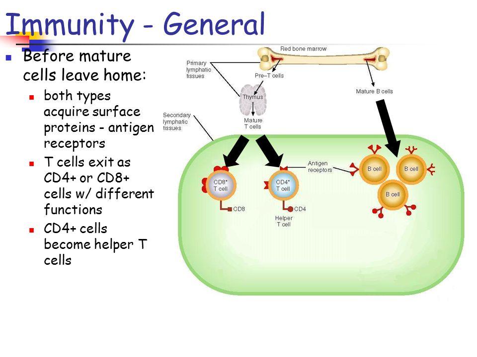 different types of immunity pdf