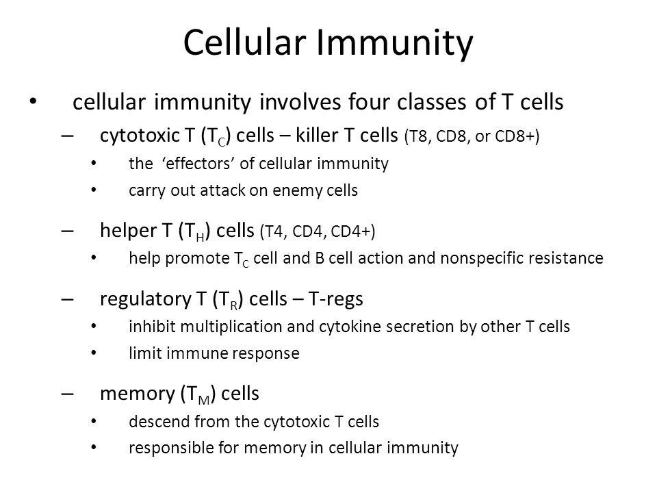 Cellular Immunity cellular immunity involves four classes of T cells