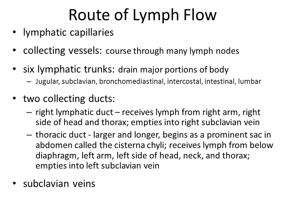 Route of Lymph Flow lymphatic capillaries