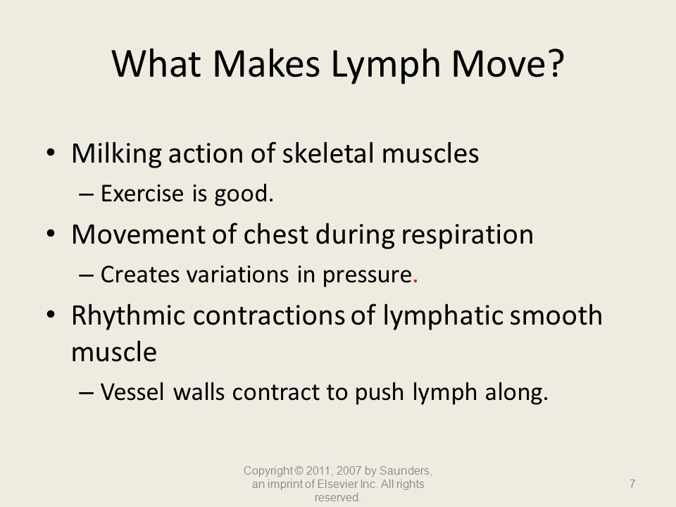What Makes Lymph Move Milking action of skeletal muscles