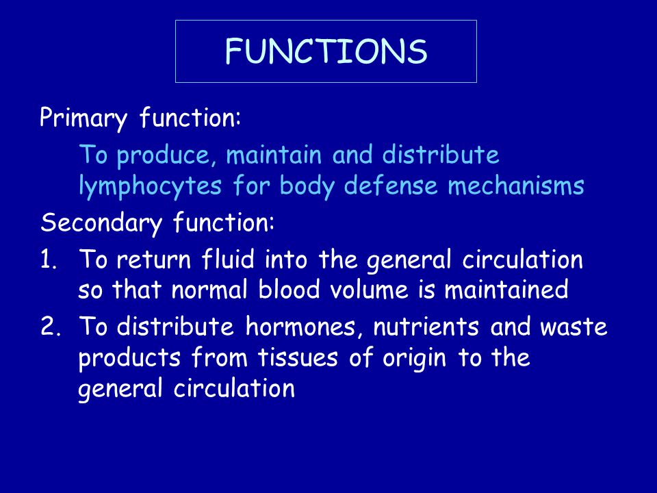 FUNCTIONS Primary function: