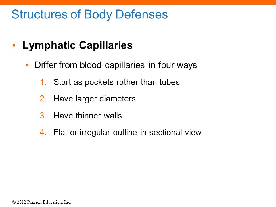 Structures of Body Defenses