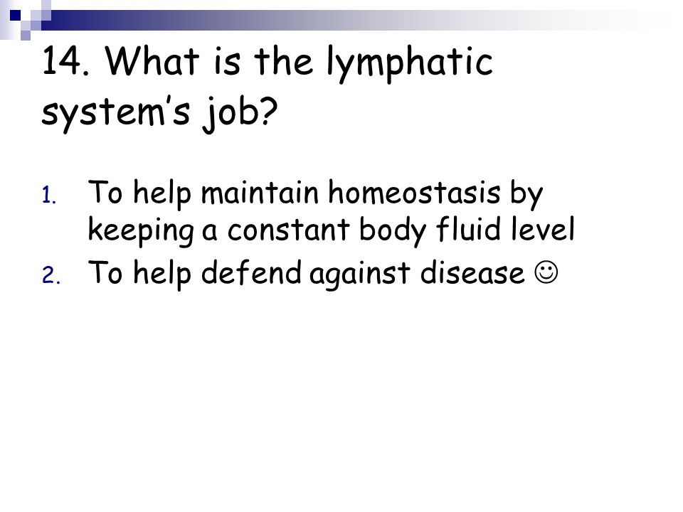 14. What is the lymphatic system's job