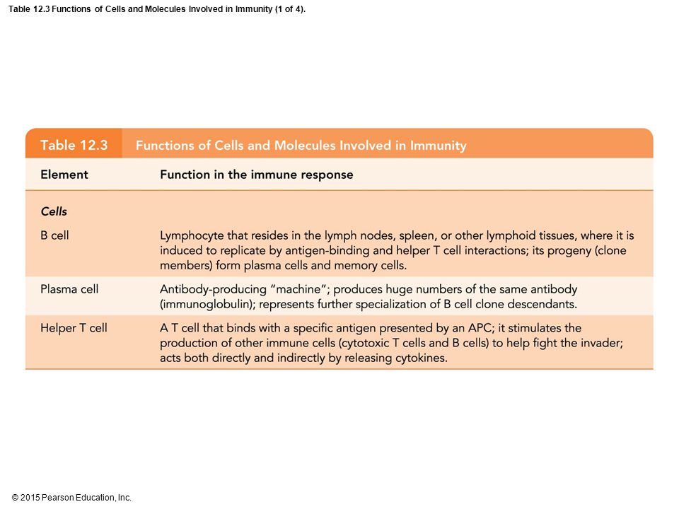 Table 12.3 Functions of Cells and Molecules Involved in Immunity (1 of 4).