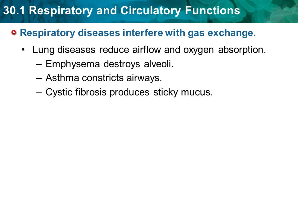 Respiratory diseases interfere with gas exchange.