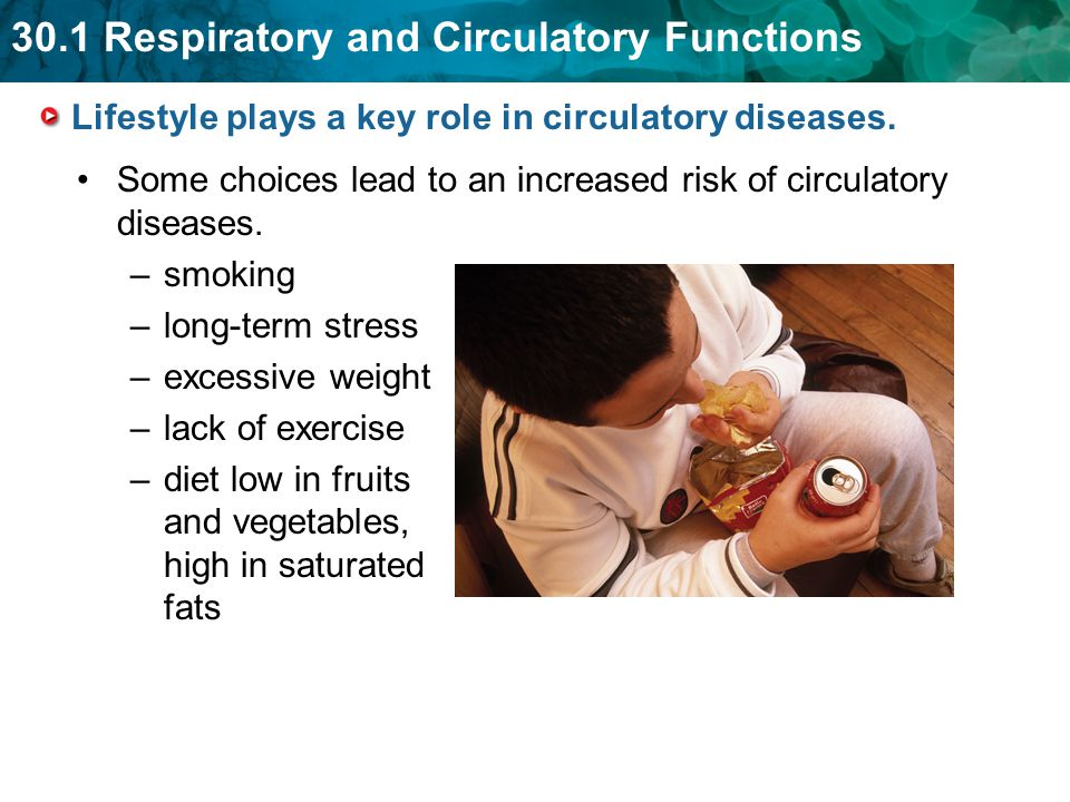 Lifestyle plays a key role in circulatory diseases.