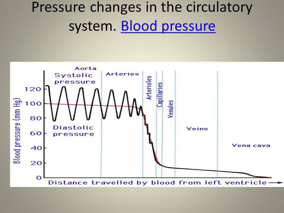 Pressure changes in the circulatory system. Blood pressure