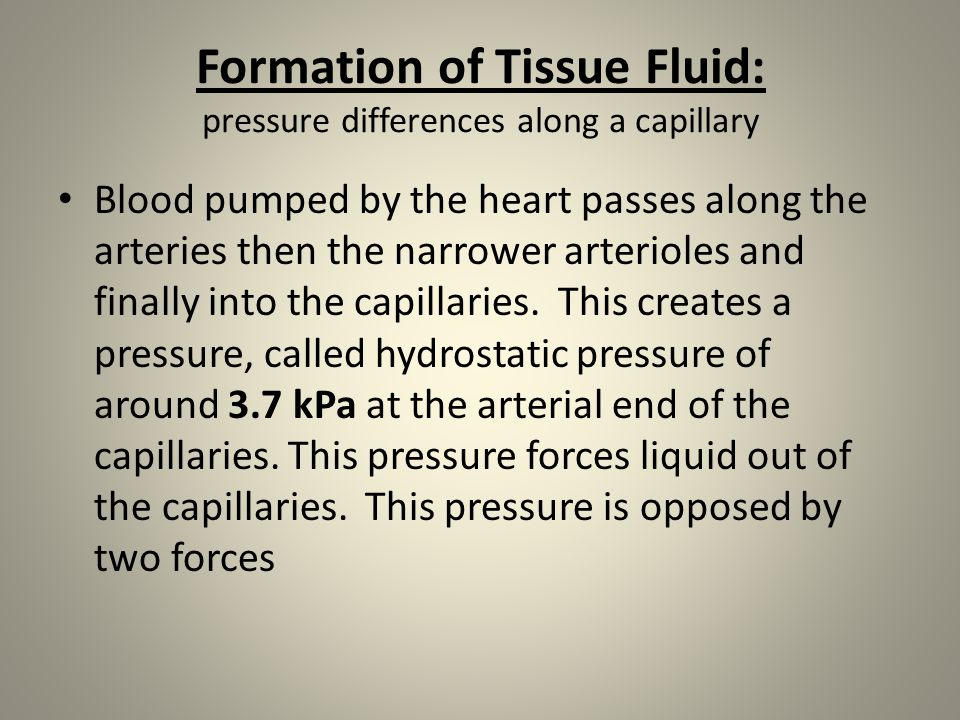 Formation of Tissue Fluid: pressure differences along a capillary