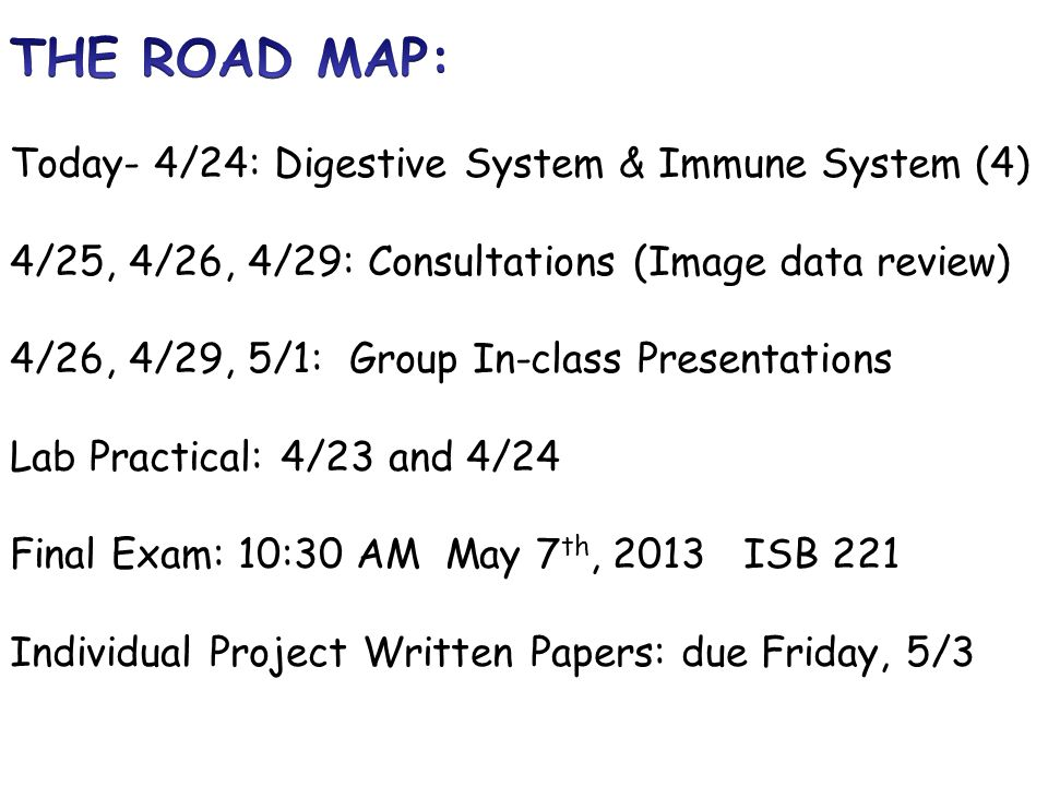 THE ROAD MAP: Today- 4/24: Digestive System & Immune System (4 ...