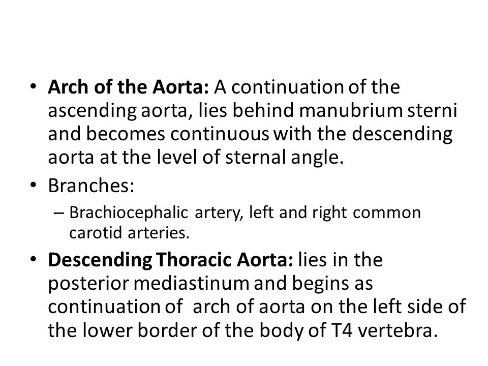 Arch of the Aorta: A continuation of the ascending aorta, lies behind manubrium sterni and becomes continuous with the descending aorta at the level of sternal angle.