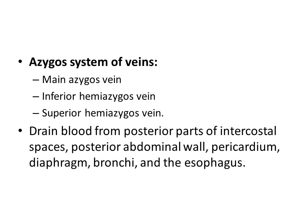 Azygos system of veins: