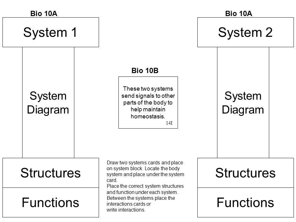 System 1 System 2 Structures Structures Functions Functions System