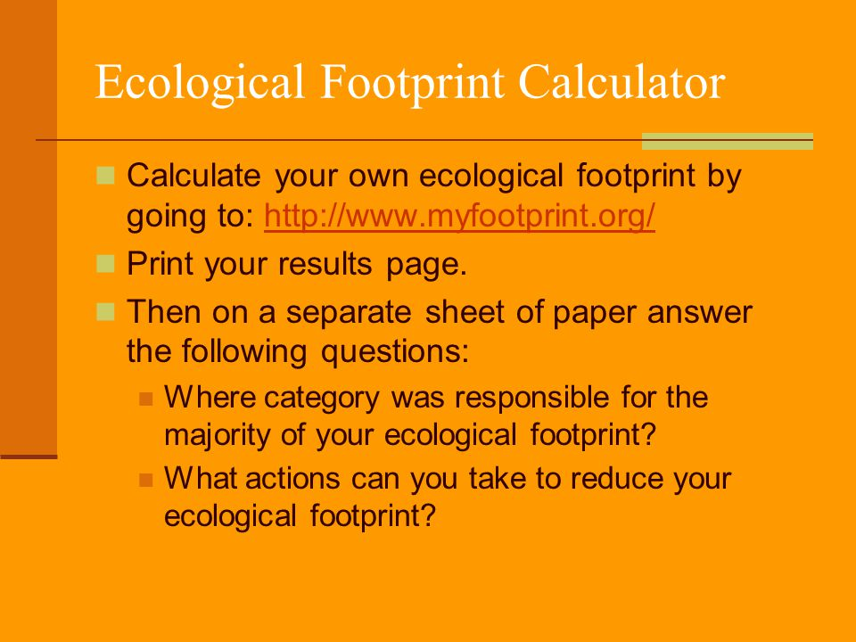 ecology footprint essay We are the premier essay writing service that offers incomparable rates and quality we can do the same custom essay, questions, accounting problems, dissertation, project proposal, term papers, research papers, and other scholarly works upon your request.