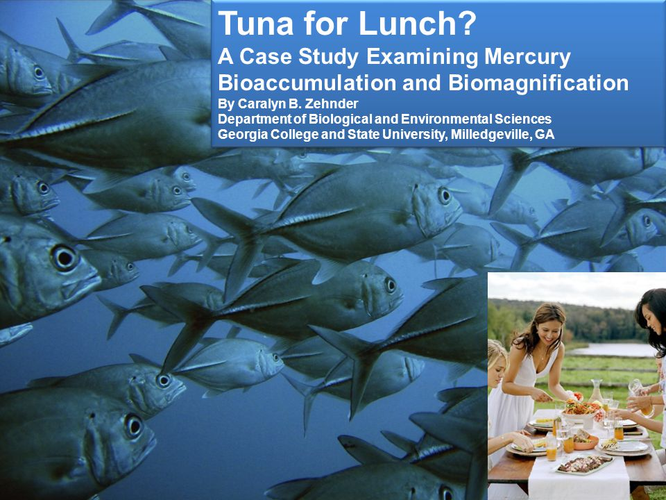 tuna for lunch a case study examining mercury bioaccumulation and biomagnification answer key