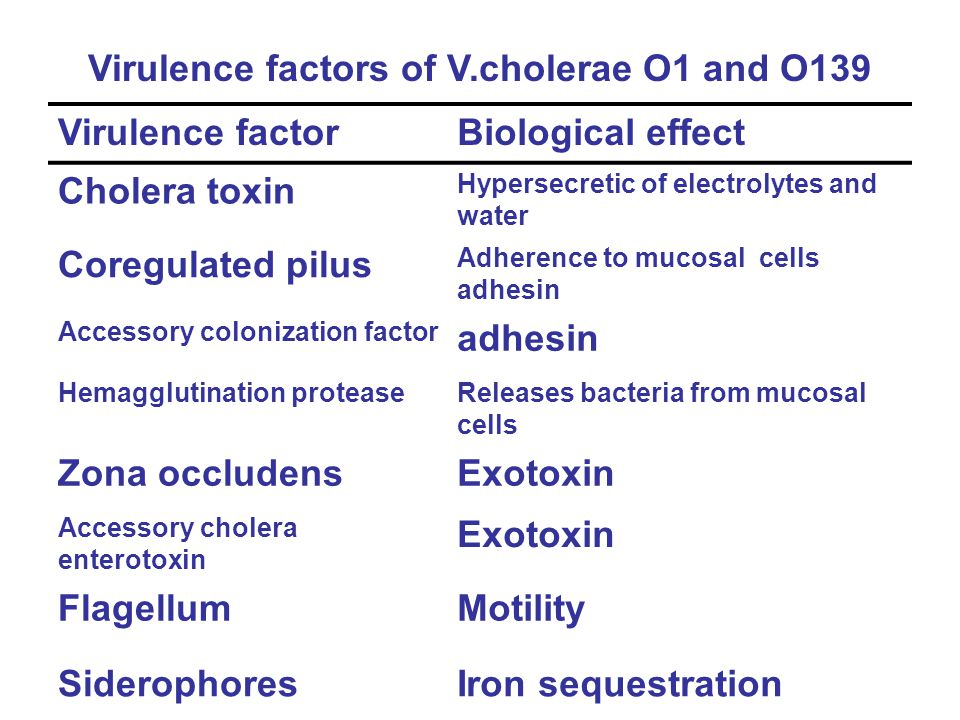 Virulence factors of V.cholerae O1 and O139