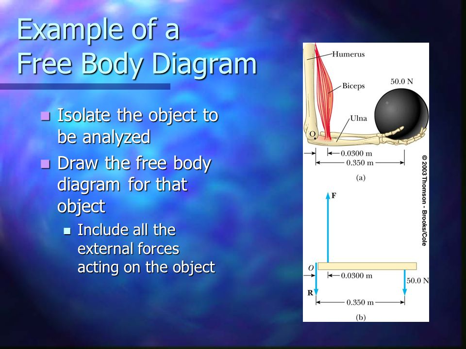 Example of a Free Body Diagram