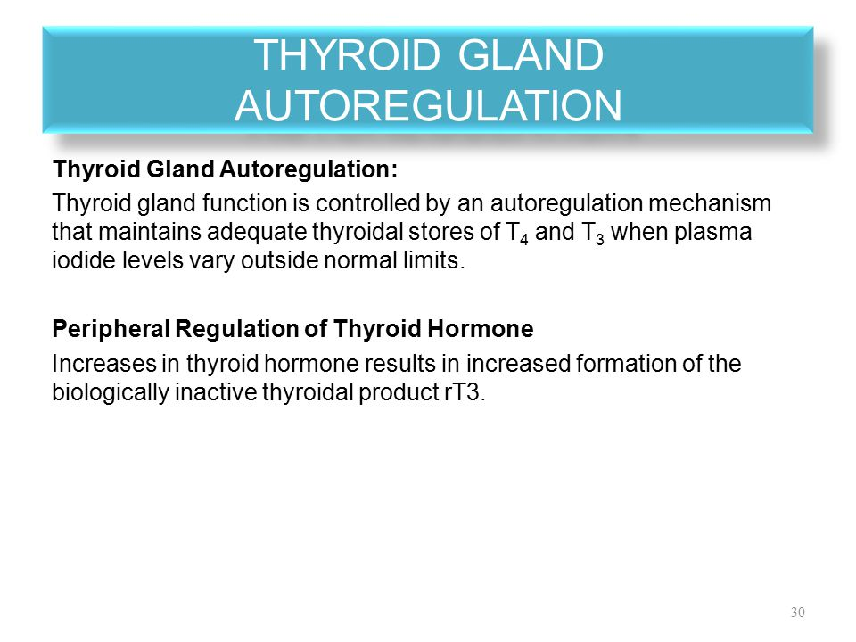 Physiology Of The Thyroid Gland Ppt Video Online Download