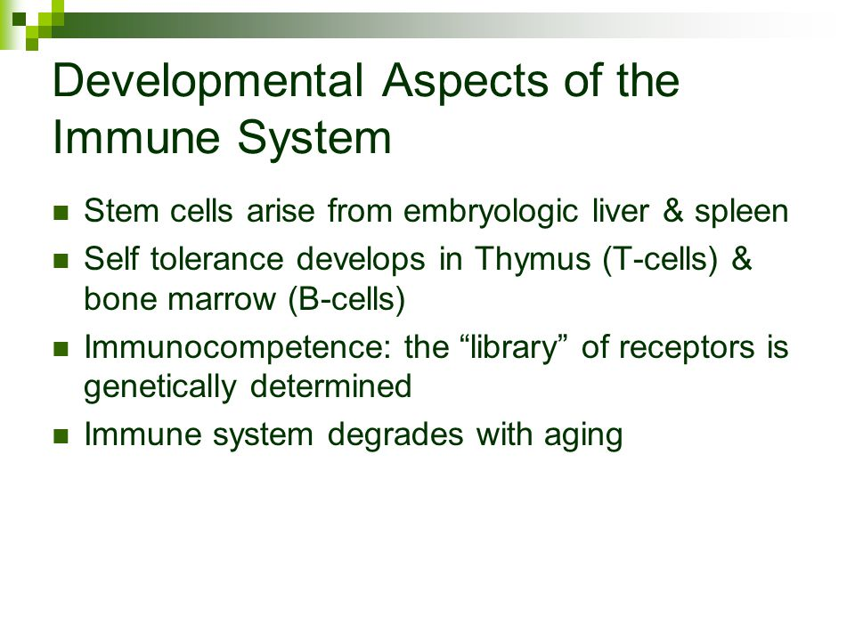 where do b cells develop immunocompetence