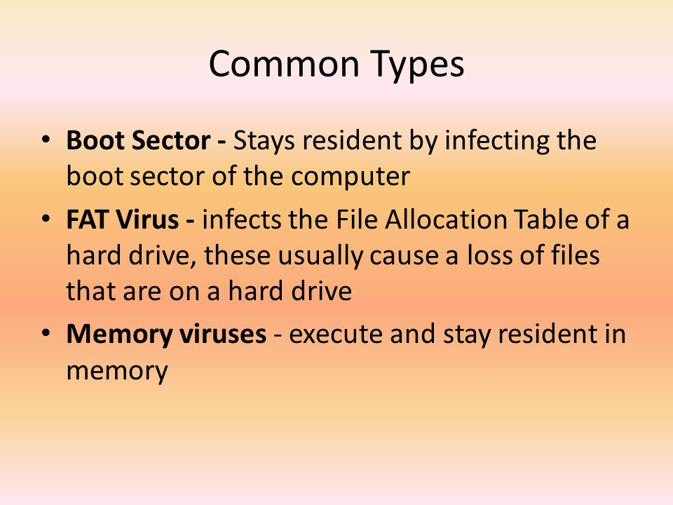 Computer Viruses  - ppt download