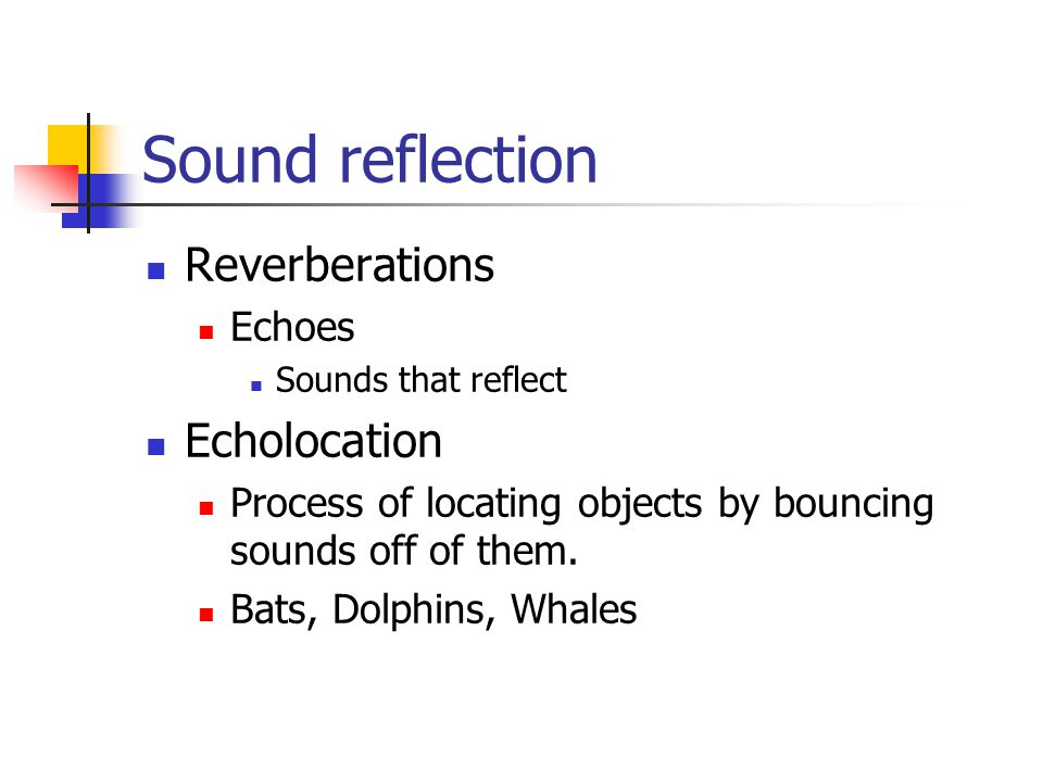 Sound reflection Reverberations Echolocation Echoes