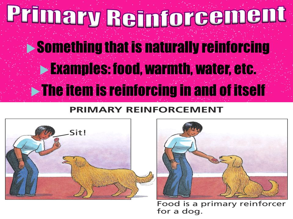 primary reinforcer example