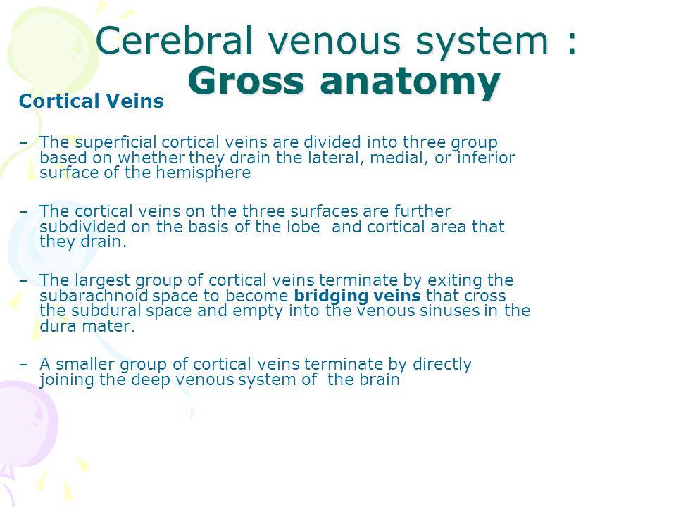 Cerebral venous system : Gross anatomy - ppt video online download