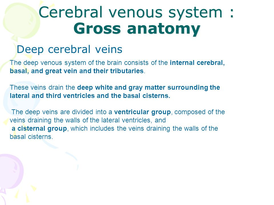 Cerebral Venous System Gross Anatomy Ppt Video Online Download