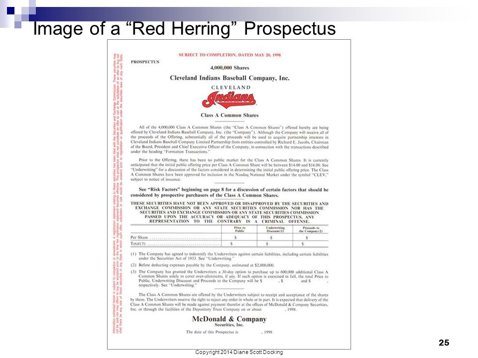 Image of a Red Herring Prospectus