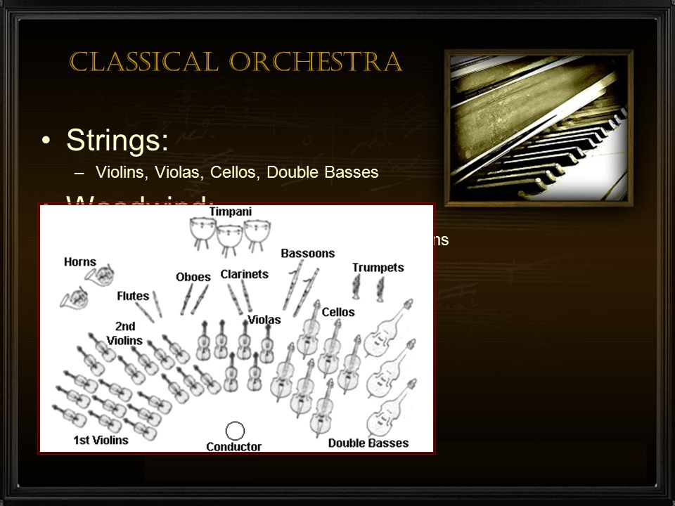 Strings: Woodwind: Brass: Percussion: Classical Orchestra
