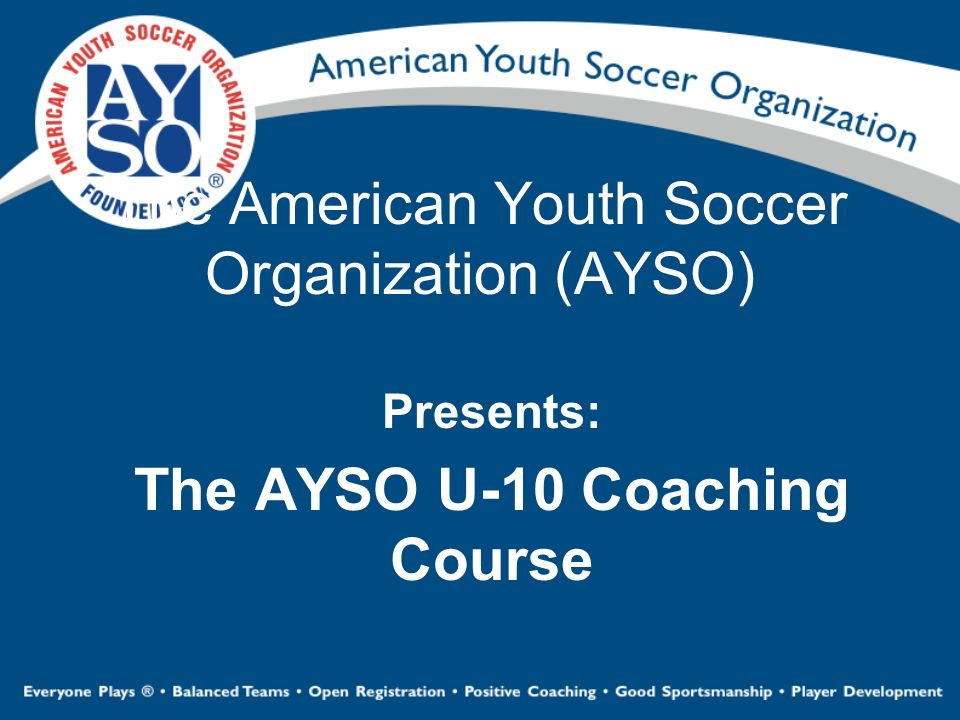 The American Youth Soccer Organization (AYSO)