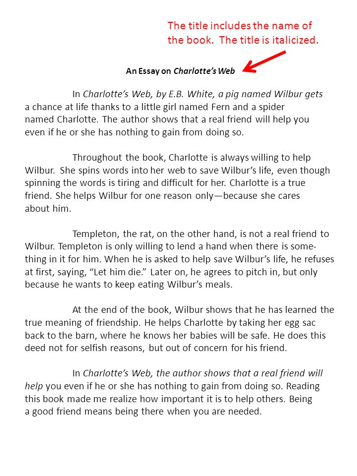 An Essay on Charlotte's Web