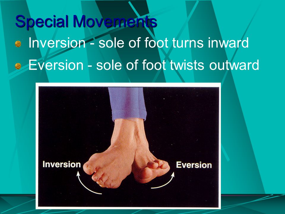 Special Movements Inversion - sole of foot turns inward