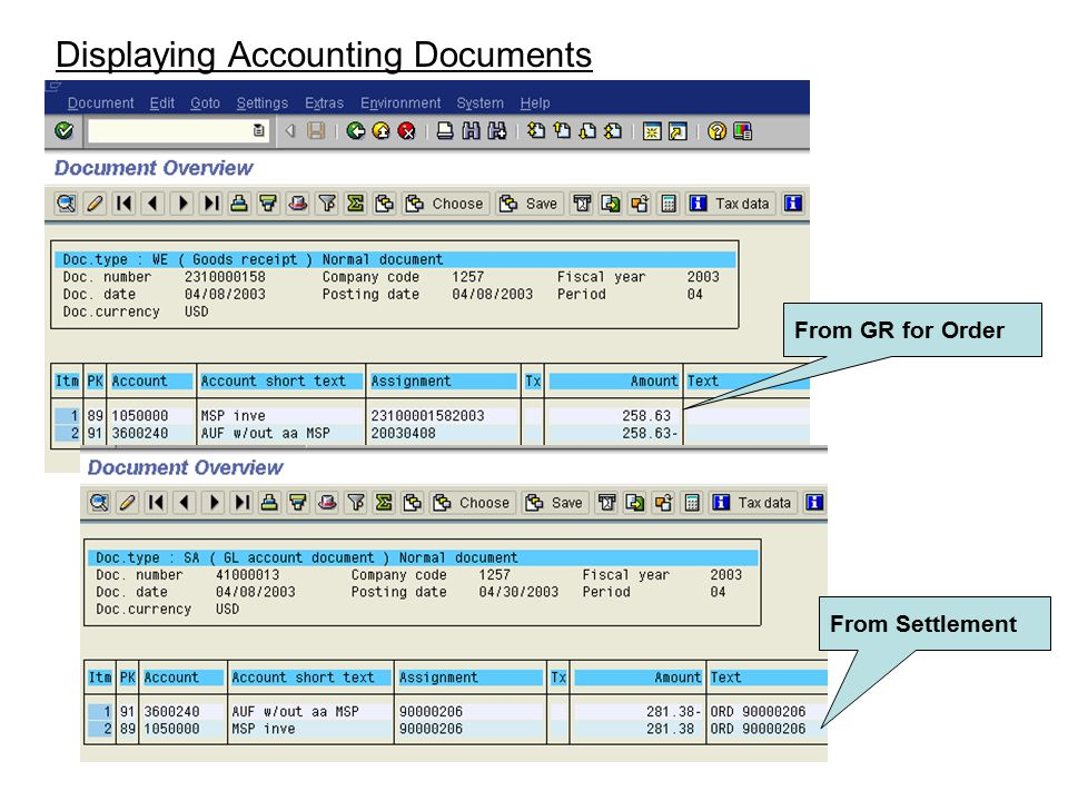 Displaying Accounting Documents