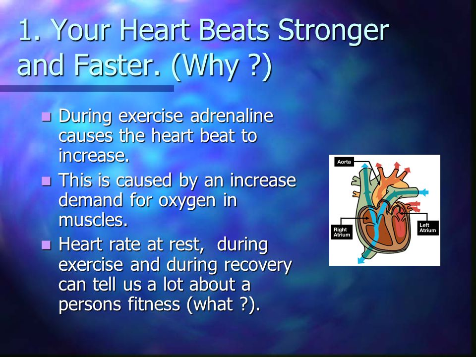 1. Your Heart Beats Stronger and Faster. (Why )