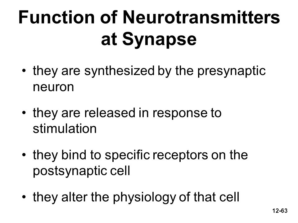 Function of Neurotransmitters at Synapse