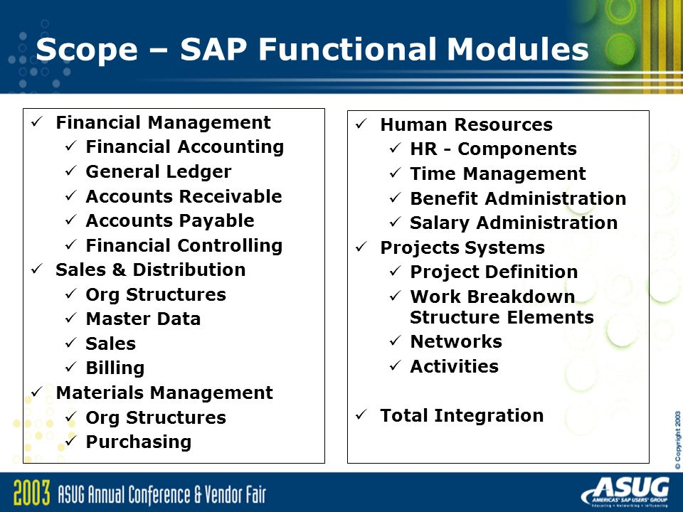 Scope – SAP Functional Modules